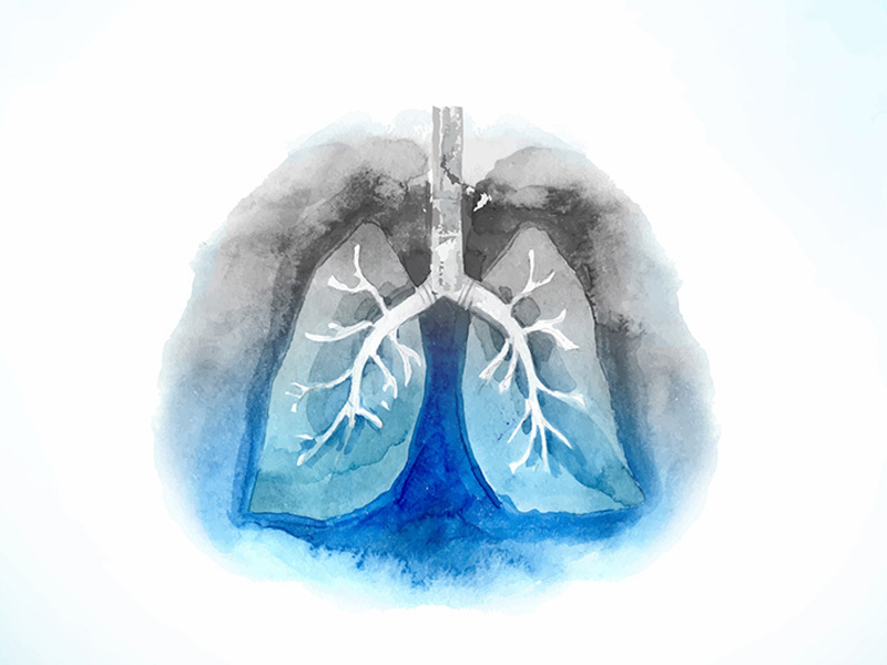 Airways and Lungs Clean